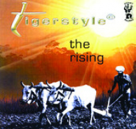 the rising by tigerstyle